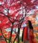 Những điểm đến tuyệt đẹp ngắm mùa thu Nhật Bản